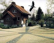 Altreu stork colony