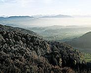 Wildnispark Zürich-Sihlwald