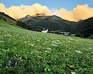 Parc naturel de la vallée de Binn
