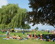 Beach bathing place Wiedehorn Egnach