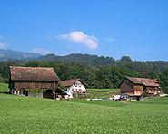 Mulfis-Hof