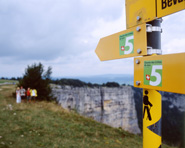 5 Chemin des Crêtes du Jura: le jura vaudois