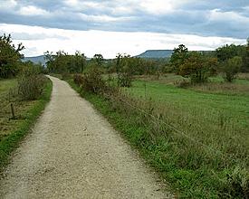 Via Jura im Oktober 2008