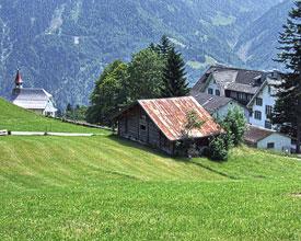 Braunwald