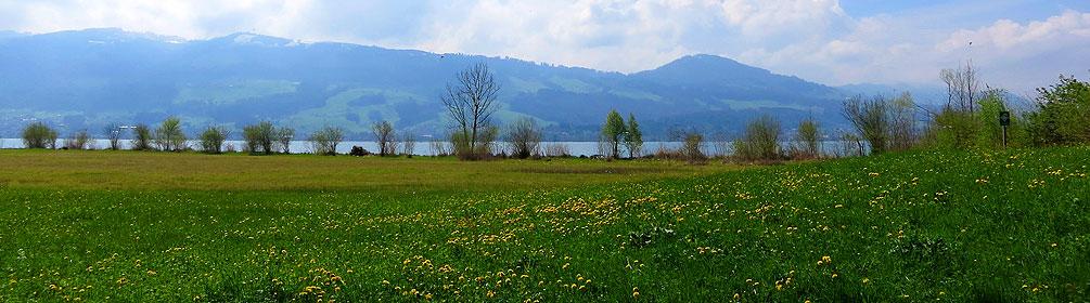 973 Obersee-Uferweg